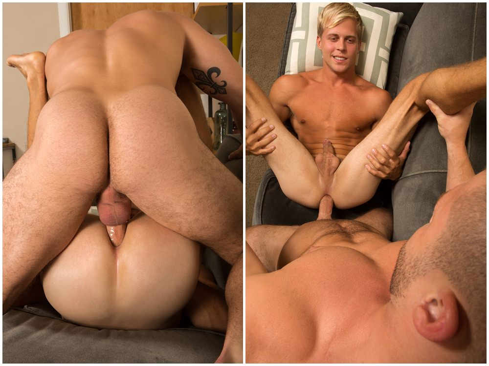 gay porn breed